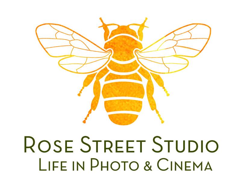 RSS_logos_r4_type
